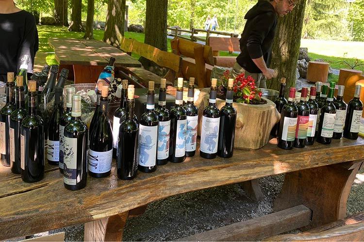 ferdy-wild-vigneron-bottiglie.jpg