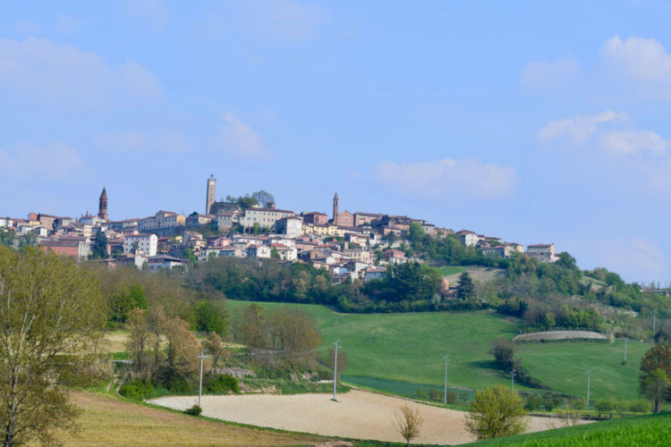 04_Vignale_Monferrato.jpg